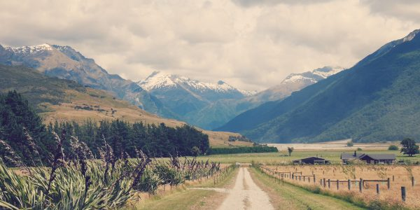 Bucketlist Wensen  - New Zeeland